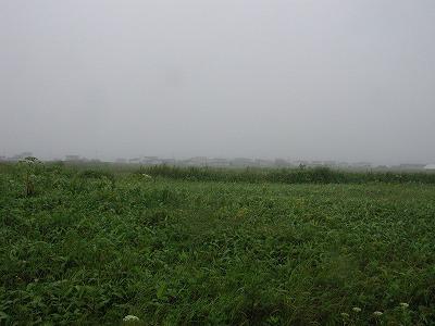 Epsn0164